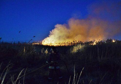 В Одессе горит камыш