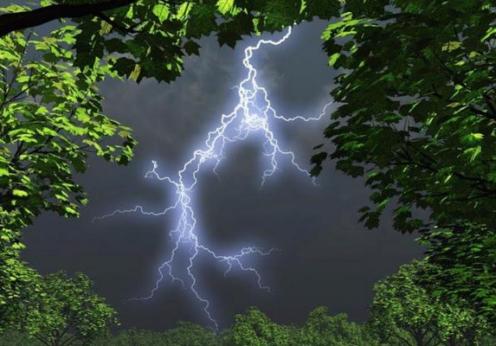 погода дожди и грозы