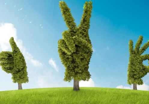 экологический фестивать одесса 2021
