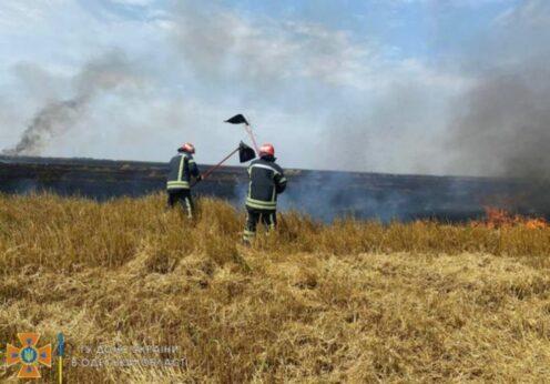 Пожар на поле в Одесской области