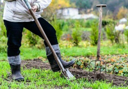 Слухи о дополнительных налогах на сельские огороды прокомментировали в Минфине