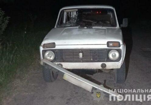 В ДТП в Одесской области погиб пешеход