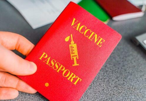 Вакцинированные украинцы туристы