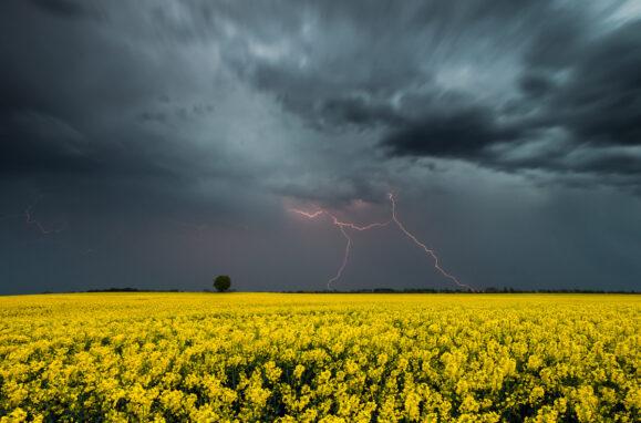 Гроза и дождь в Одесской области