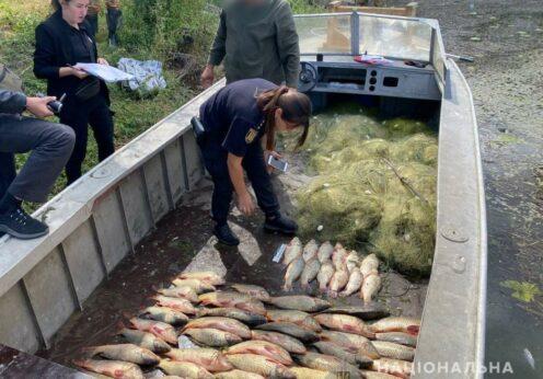 Незаконный вылов рыбы