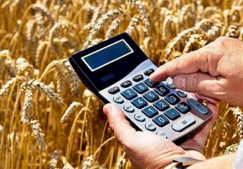 Государственная поддержка фермеров